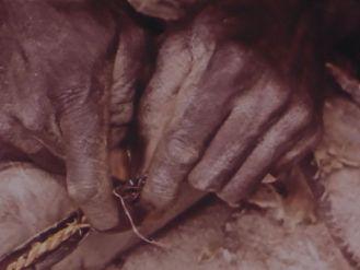 chasse-au-lion-6-copie