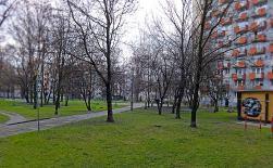"""""""Park"""" za budynkiem ZUS."""