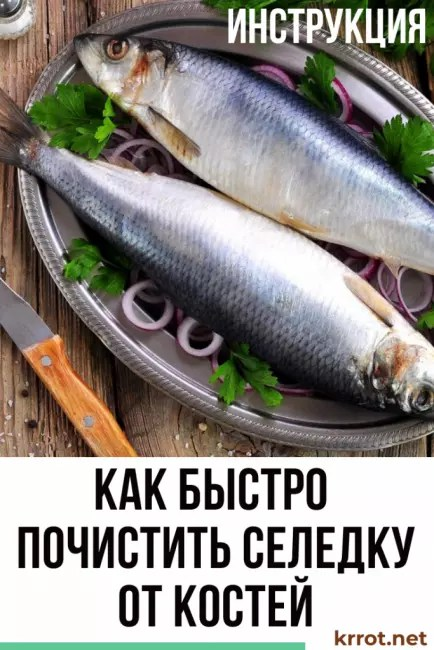 cara mengupas ikan haring dengan cepat