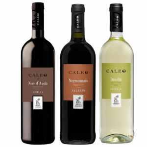 Wijnpakket Italia 3 - Wijngeschenk gevuld met luxe wijnen uit Italia - Kerstpakket wijn - www.kerstpakkettencadeaubon.nl