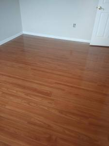 1 4 pic 8 225x300 - How to Remove Pet Odors and Stains from Flooring