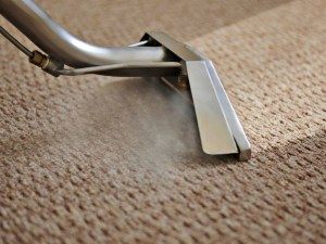 1 dF 2h4CCc RLviOIwoYoTA 300x225 - Why Cleaning Your Carpets Is So Important