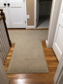 Jose 4 - New Carpeting and Stairs