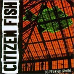 citizen-fish-free-souls