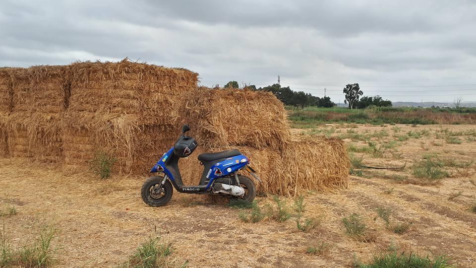 קטנוע