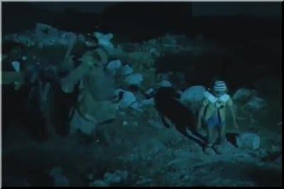 Пиноккиодағы ақымақтар елі