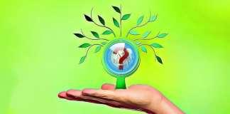 coiny s nízkou kapitalizací a velkým potenciálem
