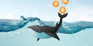 Bitcoinova velryba