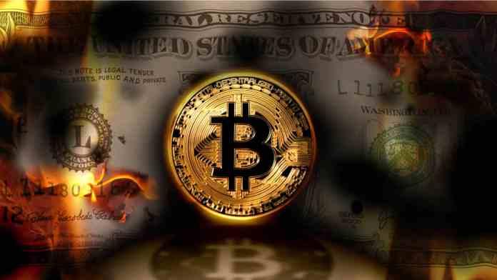 Krypto vs. fiat. Zdroj: Shutterstock.com/mkarco