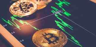 Bitcoin a jeho bullrun