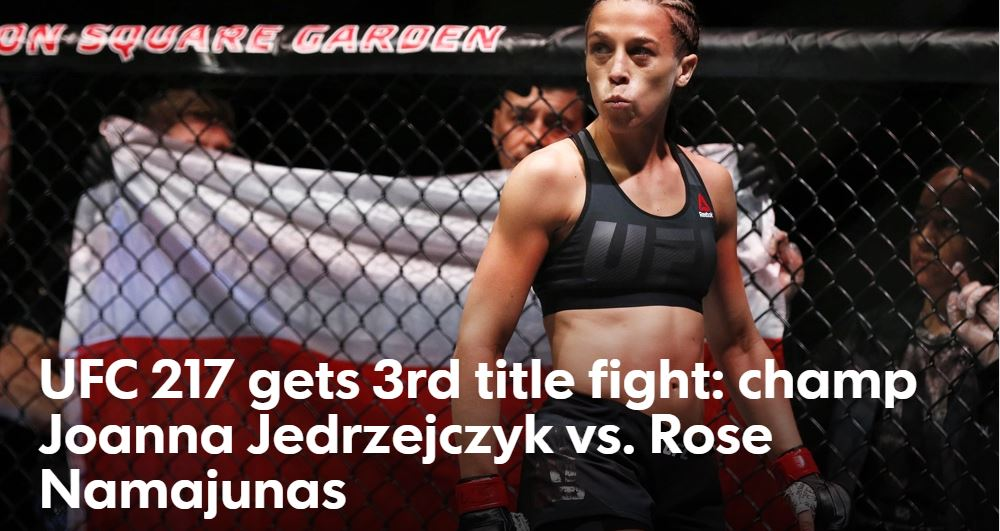 ufc 217 female fighters