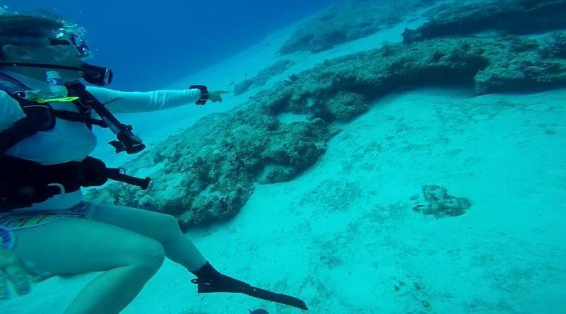 Krystal International Vacation Club Parque Nacional Marino Arrecife (2)