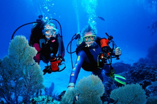 Best Snorkel Spots in Puerto Vallarta