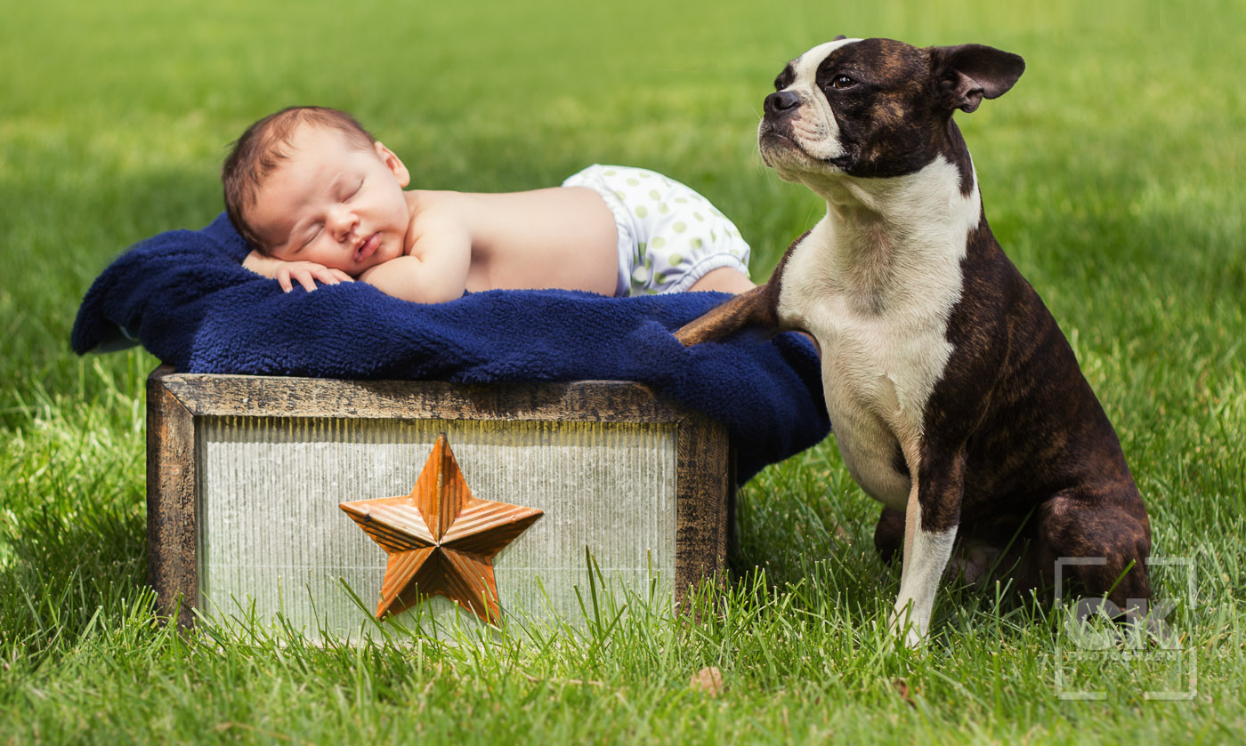 Chris Kryzanek Photography - newborn with dog