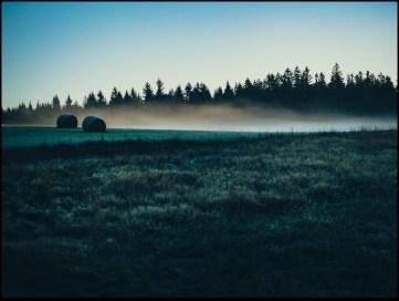 Pierwszy dzień jesieni w schronisku Pasterka. Łaka w srebrno-niebiesko-zielonym woalu szronu. Stoję i gapię się przez kilka minut, a w dłoniach paruje gorący kubek kawy.