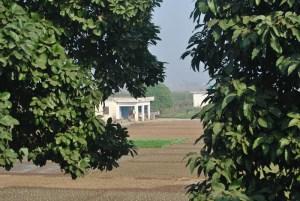 Blick zwischen Zweigen auf ein Feld und Gebäude