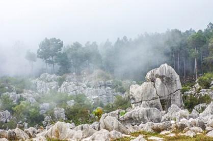 misty and lunar