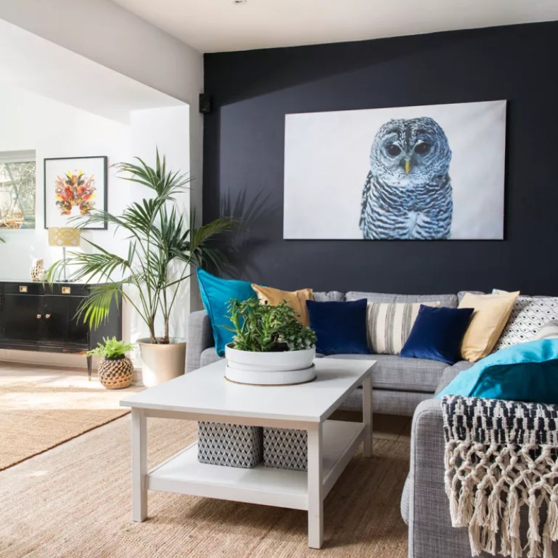 Modern living room with ink blue walls and owl canvas   Ideal Home