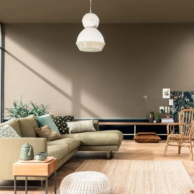 Brave ground Dulux colour in the living room