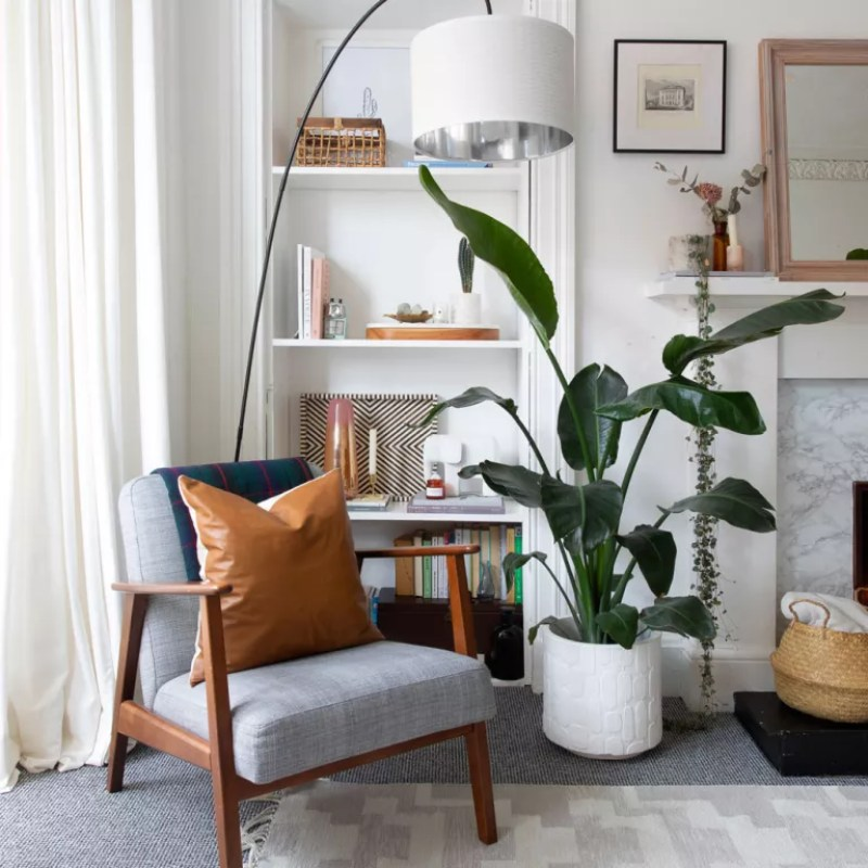 white living room with grey armchair tall houseplant
