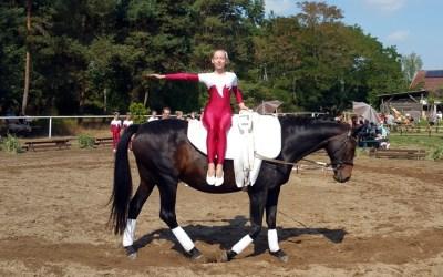 Beste Turnkunst auf dem Rücken der Pferde