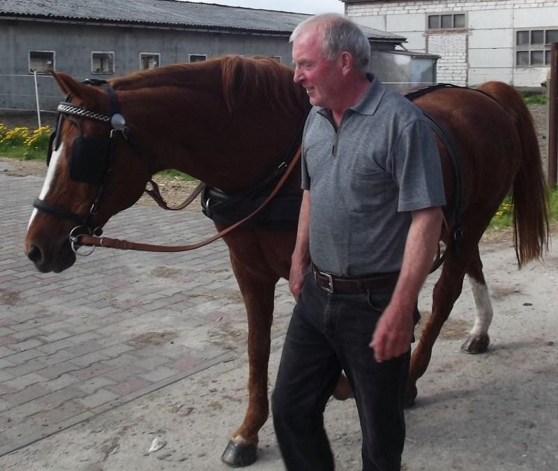 Ernst Freistedt hatte ein Herz für Pferde