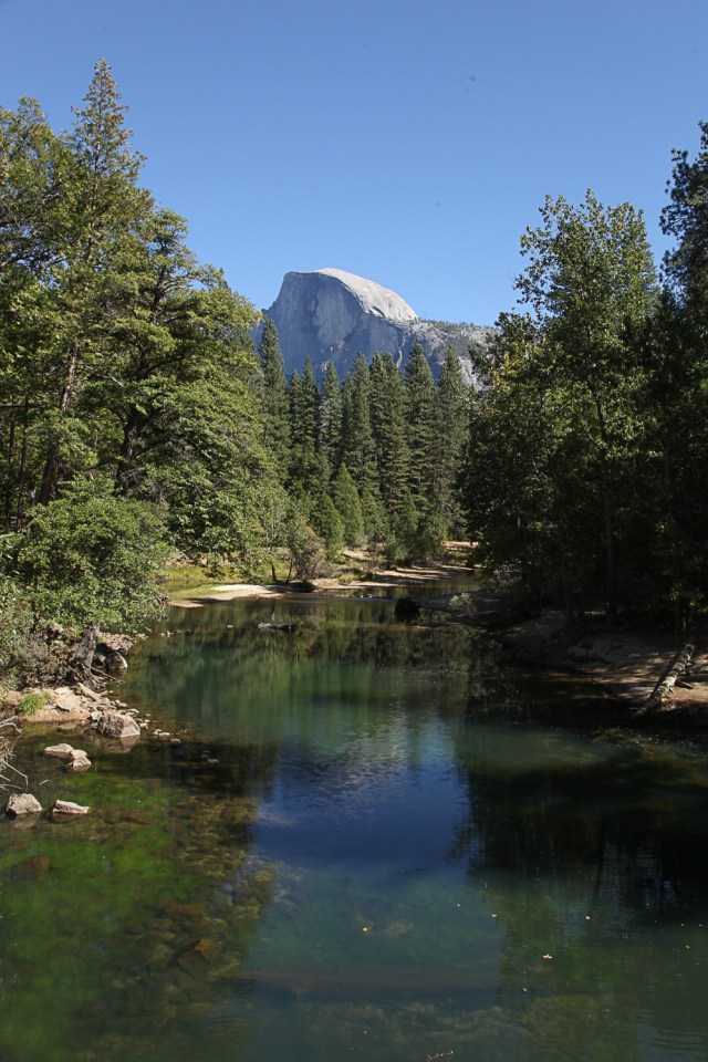 view of half dome from the valley