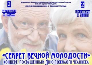 день пожилого человека копия