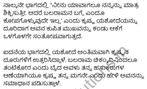 सूर-श्याम Summary in Kannada 2