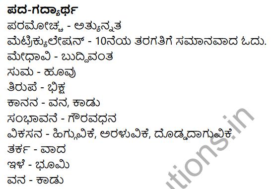 Sarthaka Badukina Sadhaka Summary in Kannada 6