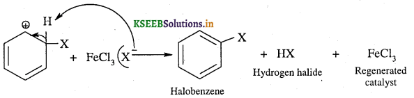 1st PUC Chemistry Question Bank Chapter 13 Hydrocarbon - 107