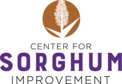 Visit the Center for Sorghum Improvement