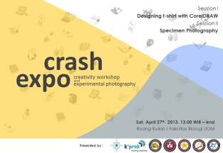 CRASH #2 EXPO 2013