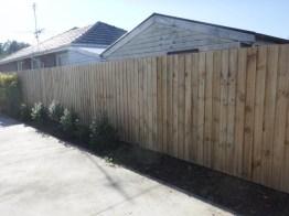 Standard paling fence