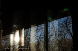 2015-365march4-1