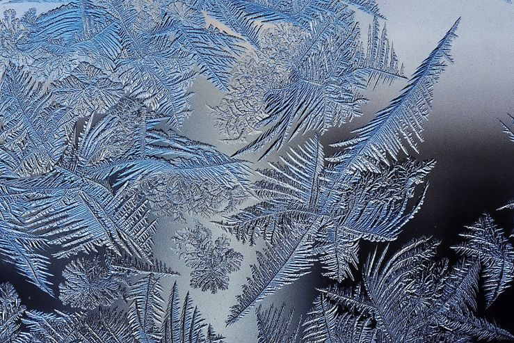 Frost_patterns