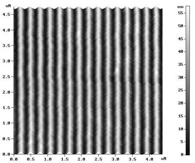 TDG - AFM Diffraction Grating