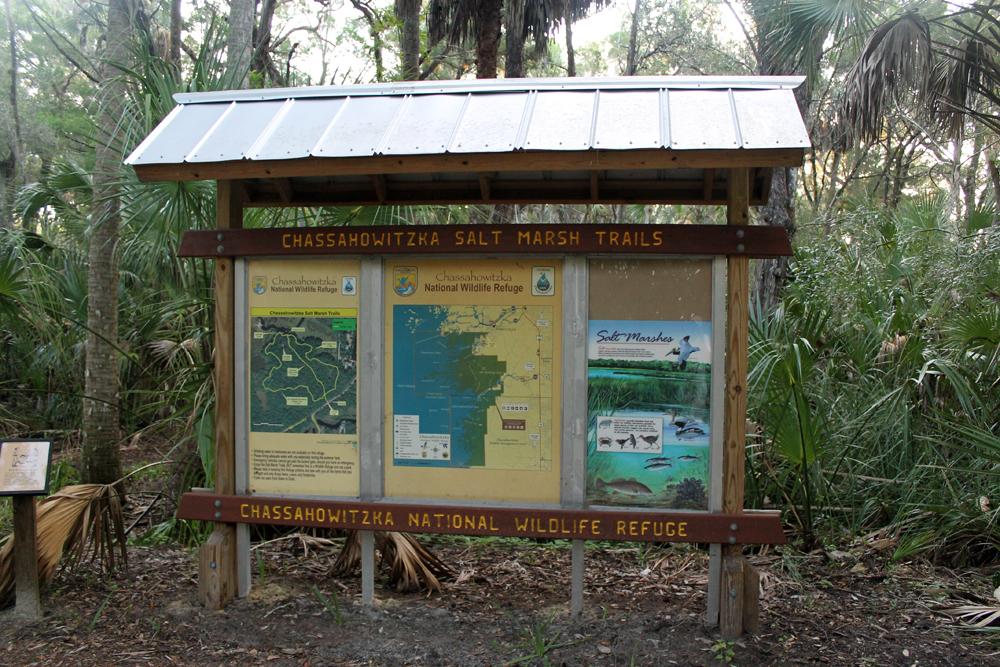 Chassahowitzka  Salt Marsh Trail
