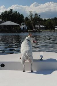 2012_06_18boat