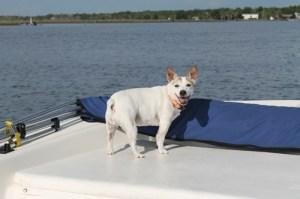 2012_09_21boat
