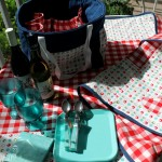 Use Miss Polka Dance old Lace/Barn Red for pockets and wine bottle holders on picnic tote.