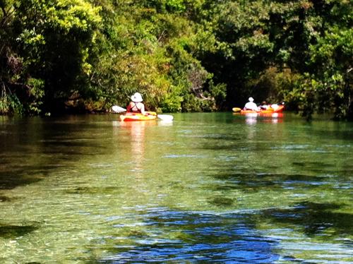 Kayaking on the Weeki Wachee River