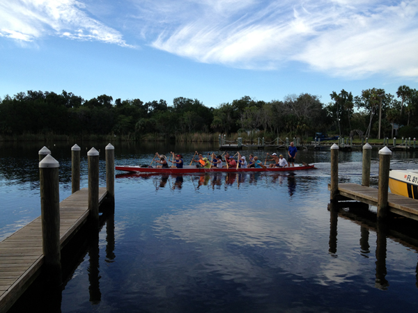 Dragon Boat racers training