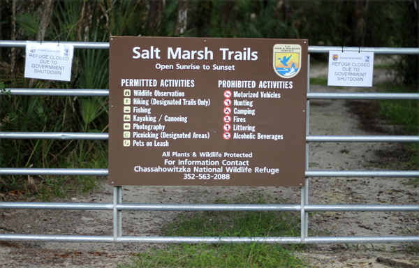 Salt Marsh Trails