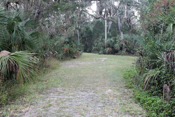 Local Trail -- Chassahowitzka Salt Marsh Trails