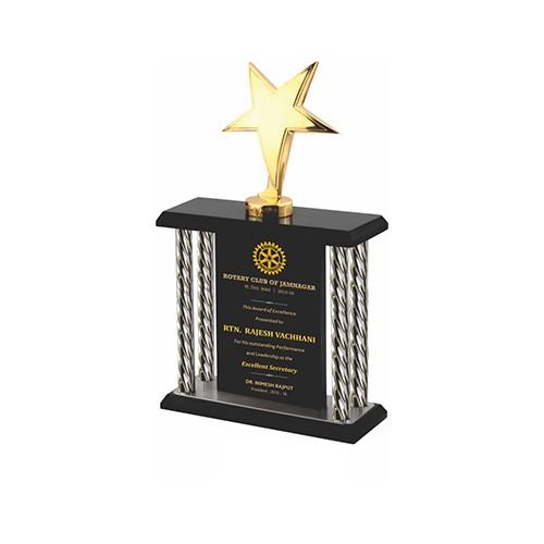 Wood-Metal-Trophy-2264