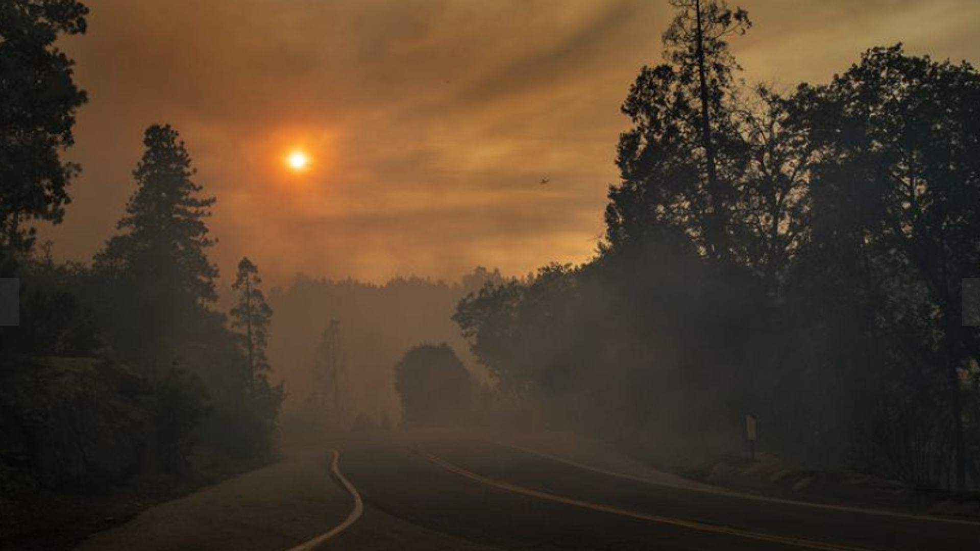 A smoky haze fills the landscape in Idyllwild on July 25, 2018. (Credit: Gina Ferazzi / Los Angeles Times)