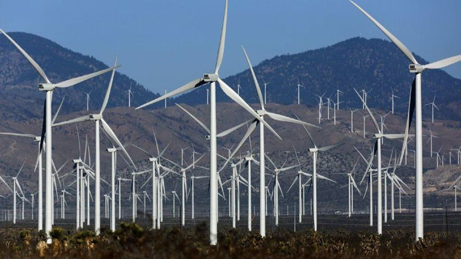 A view from Highway 14 of wind turbines in May 2013. (Credit: Irfan Khan / Los Angeles Times)