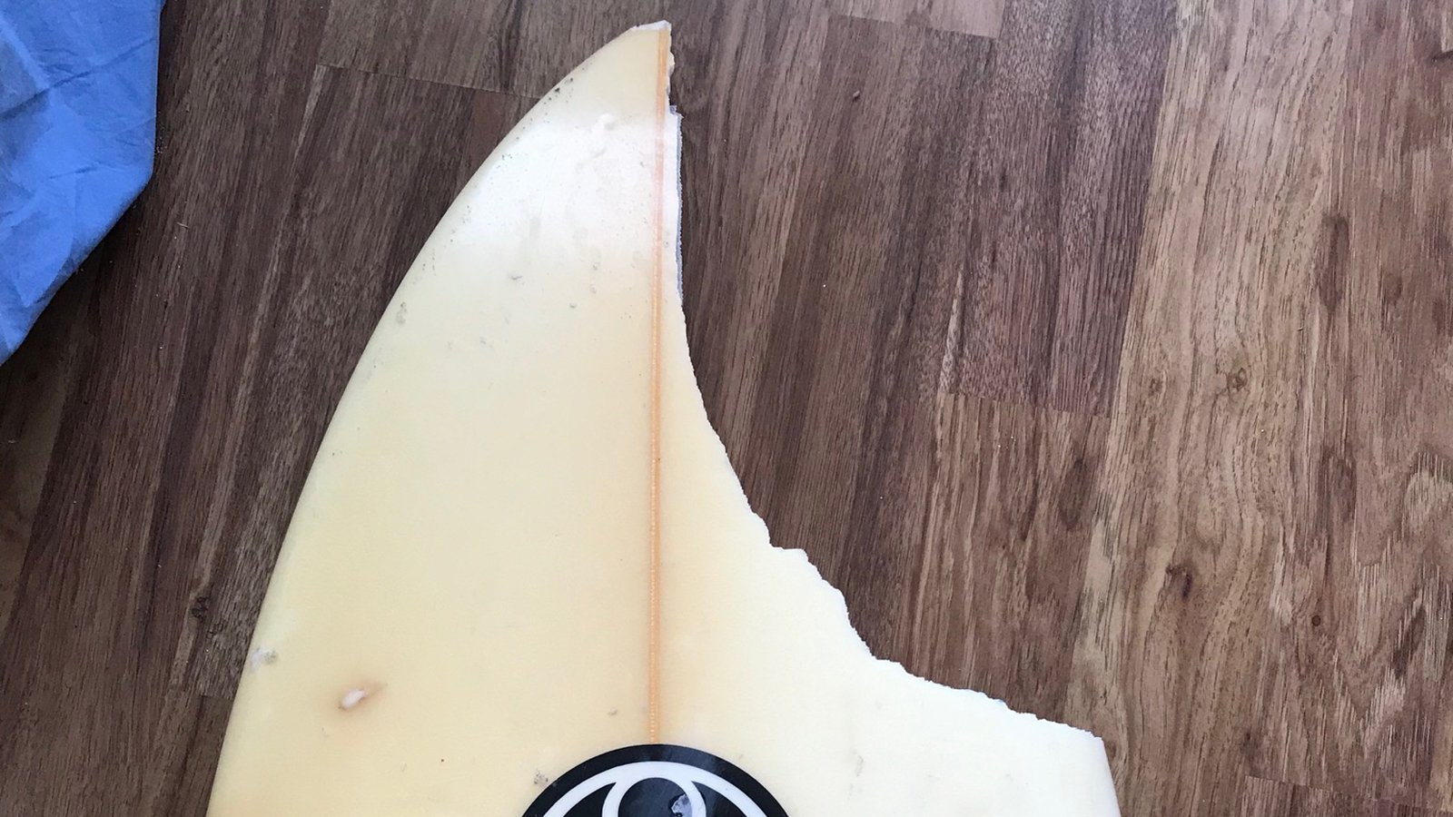 "Max Keliikipi said a shark ""bit a huge chunk off"" his board. (Credit: Courtesy Max Keliikipi)"