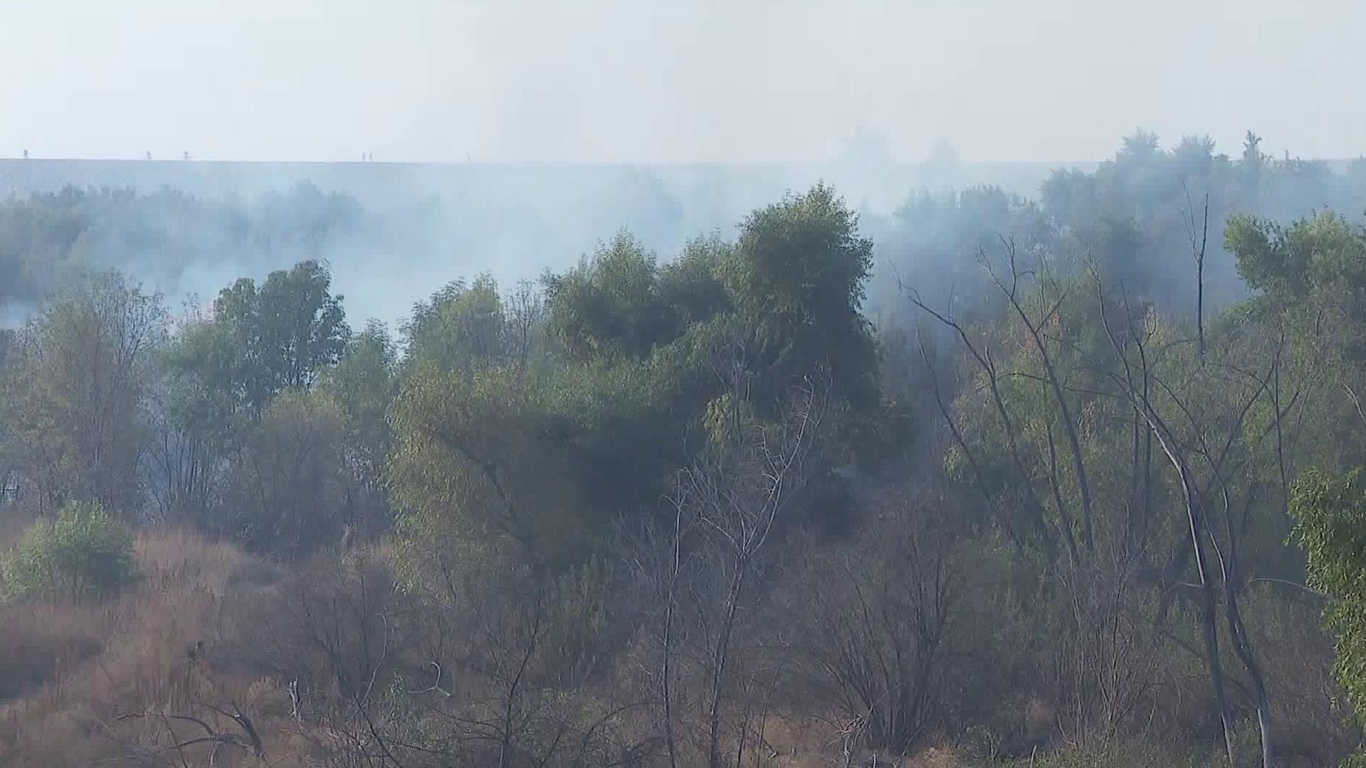 A brush fire burns in Hansen Dam on Nov. 11, 2019. (Credit: KTLA)